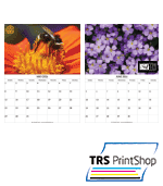 MAGNETIC BUSINESS CARD CALENDAR 3.5